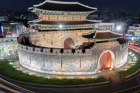 Day Trips & Excursions in Suwon