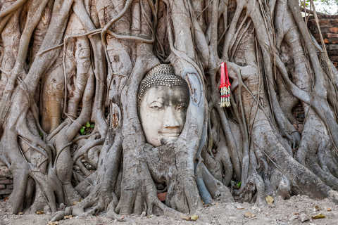 Day trips in Ayutthaya with local guides