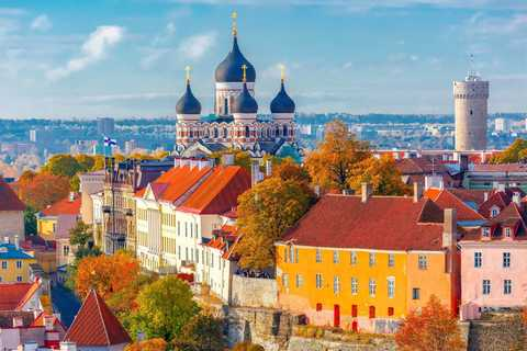 Day trips in Tallinn with local guides